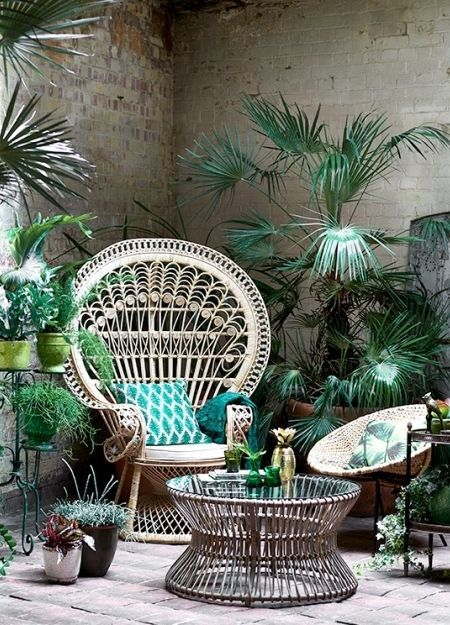houseplant chair